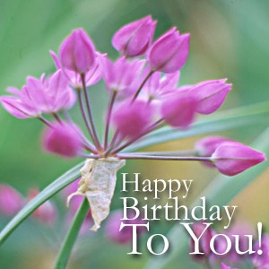 Happy Birthday To You .. Good morning Email message