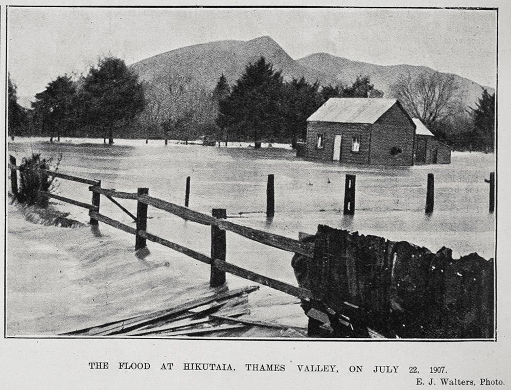 Hikutaia New Zealand  city images : ... Genealogy & History Resources: Thames NZ : Hikutaia Cartoon & photo