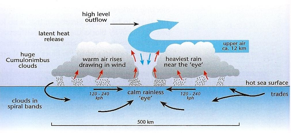 a short explanation of the processes of hurricane forming The formation of a hurricane involves the growth of a sustained low pressure system, which establishes an inflow of warm air from the surface when the circulation establishes a cyclic flow (counterclockwise in the northern hemisphere), a tropical storm can form.