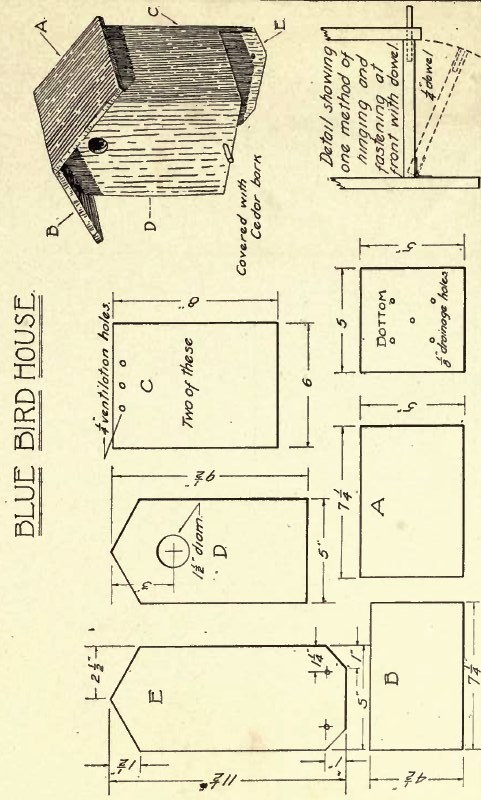 birdhouse designs and plans