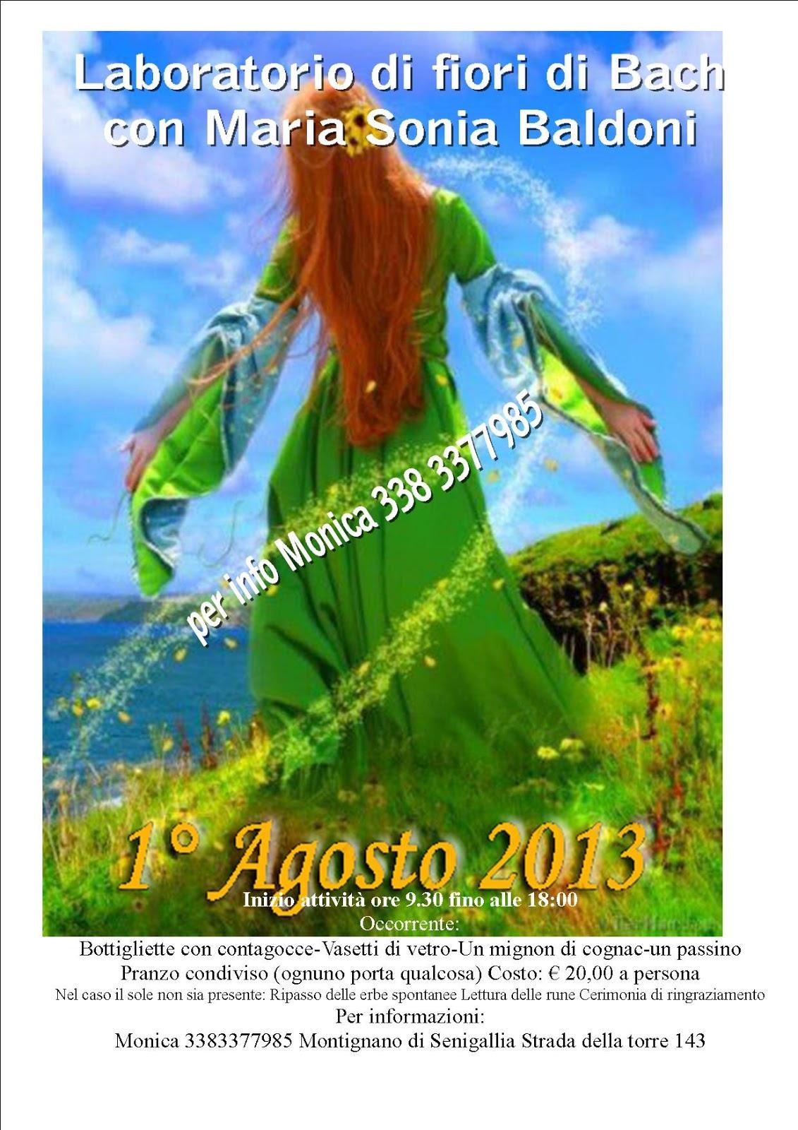Passeggiata erboristica tradizione e raccolta delle erbe for Fiori di agosto