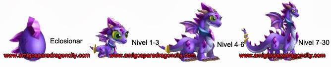 imagen de los niveles del  crecimiento del dragon amatista