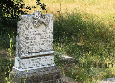 Cimitirul Sulina