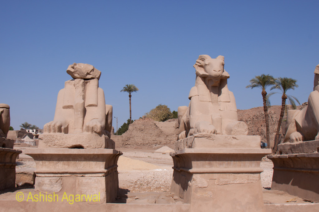 Couple of Sphinx like structures inside the Karnak temple in Luxor, Egypt