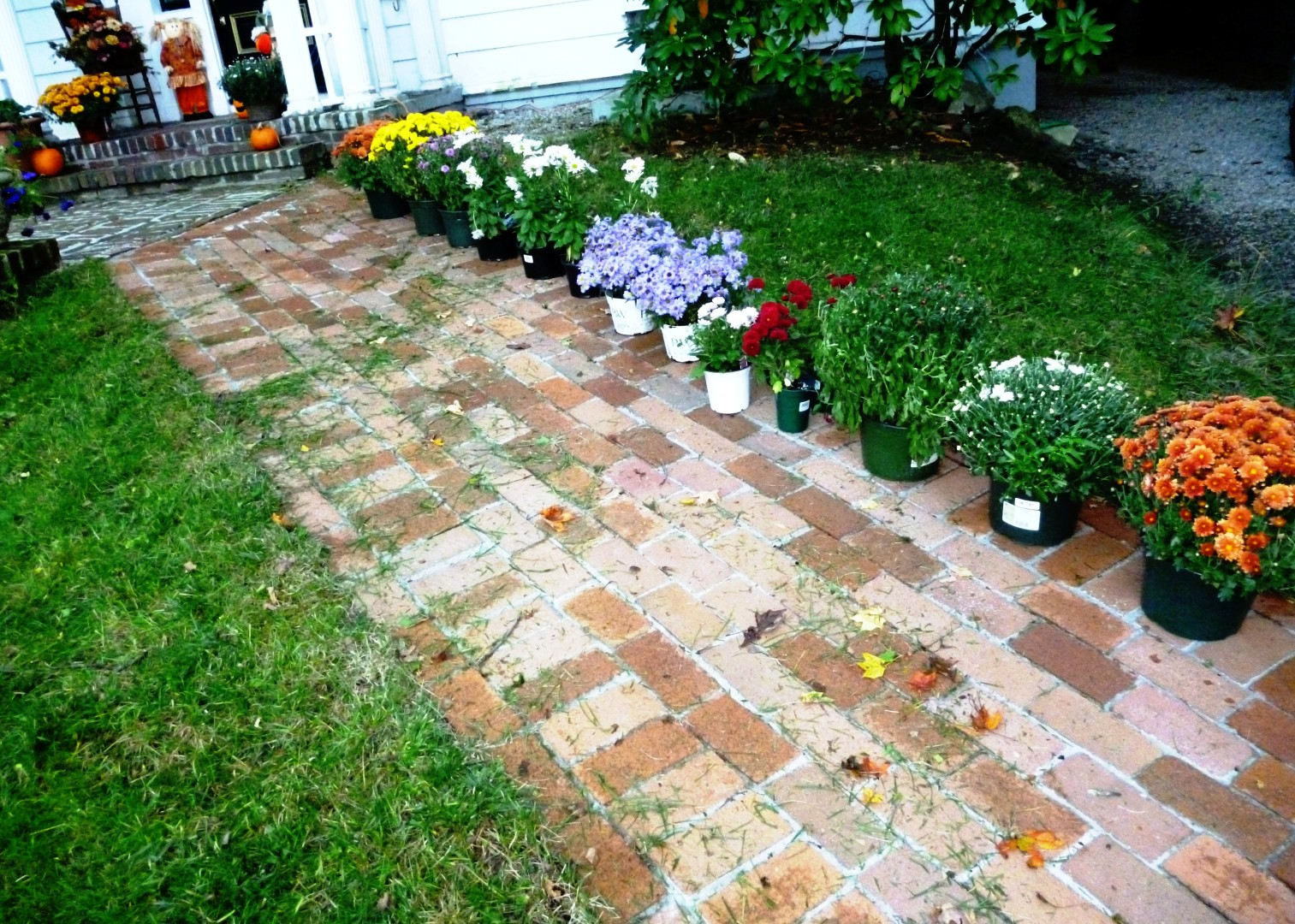 Round Flower Bed : Round Flower Bed : Round Brick Flower Bed