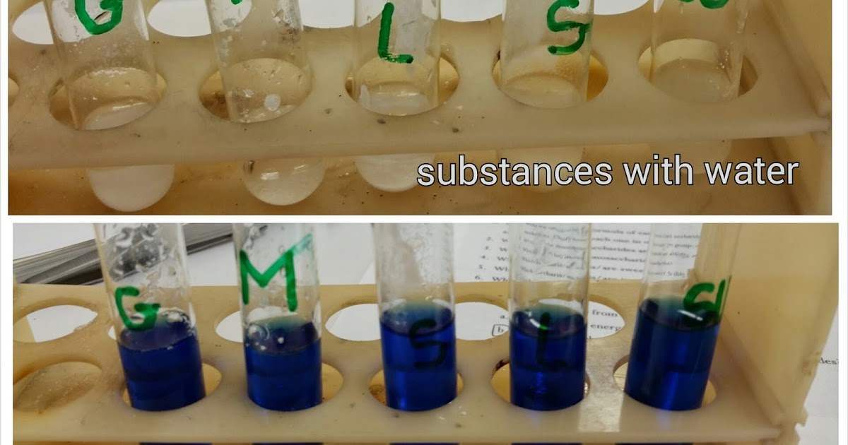 an experiment on using different reagents to test for four macromolecules In this lab we would conduct an experiment to test t there are four different major macromolecules they are in the different reagents at the.