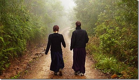 Walking meditation forest photo