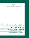 CURRICULUM NACIONAL BASE