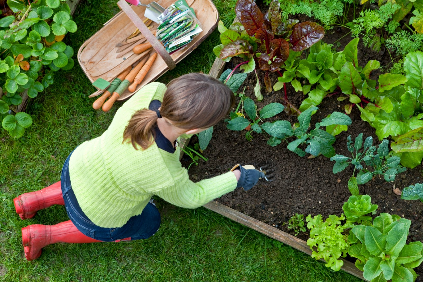 gardening tips, homebase, back pain