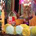 Lễ hội hoa cúc rực rỡ ở Quảng Ninh