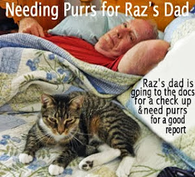 Purring for Furkid's Dad