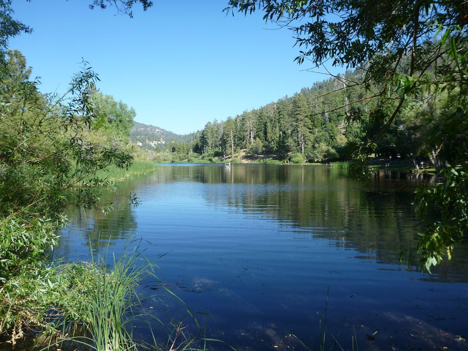 California photos lake campground and jackson lake review for Jackson lake fishing