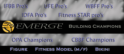 The Official Blog of Team Emerge