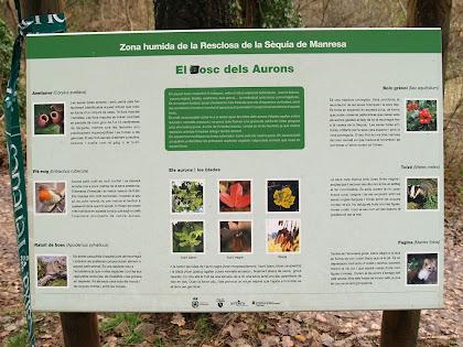 Plafó indicatiu del tram del Bosc dels Aurons