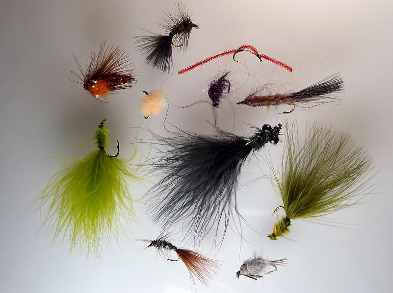 Micheal Medina Carp Fly Selection