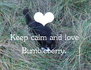 ❤ Keep calm and love Bumbleberry! ❤