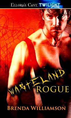 Wasteland Rogue