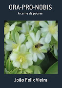 """Livro """"ORA-PRO-NOBIS: a carne de pobres"""" com prefácio de Sandra Barros Sanchez"""