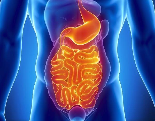 إزالة البكتيريا من المعدة