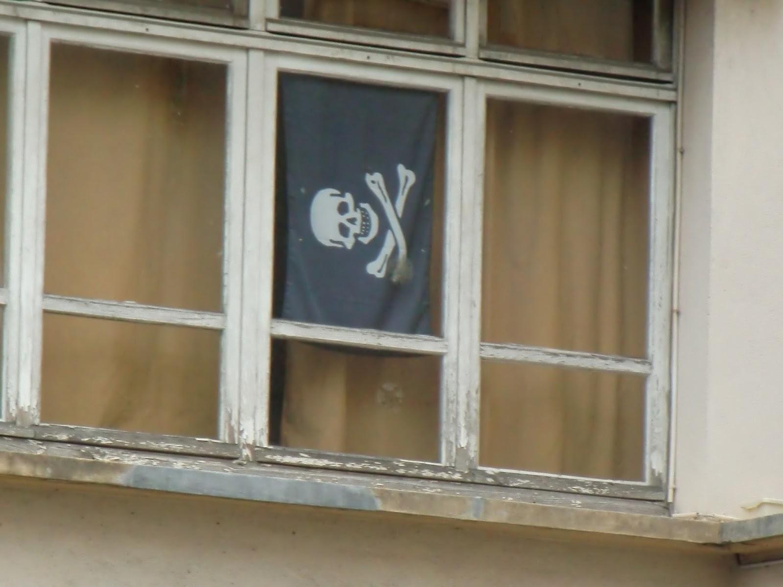 Promenade d 39 une fleur urbaine le drapeau noir aux for Fenetre urbaine