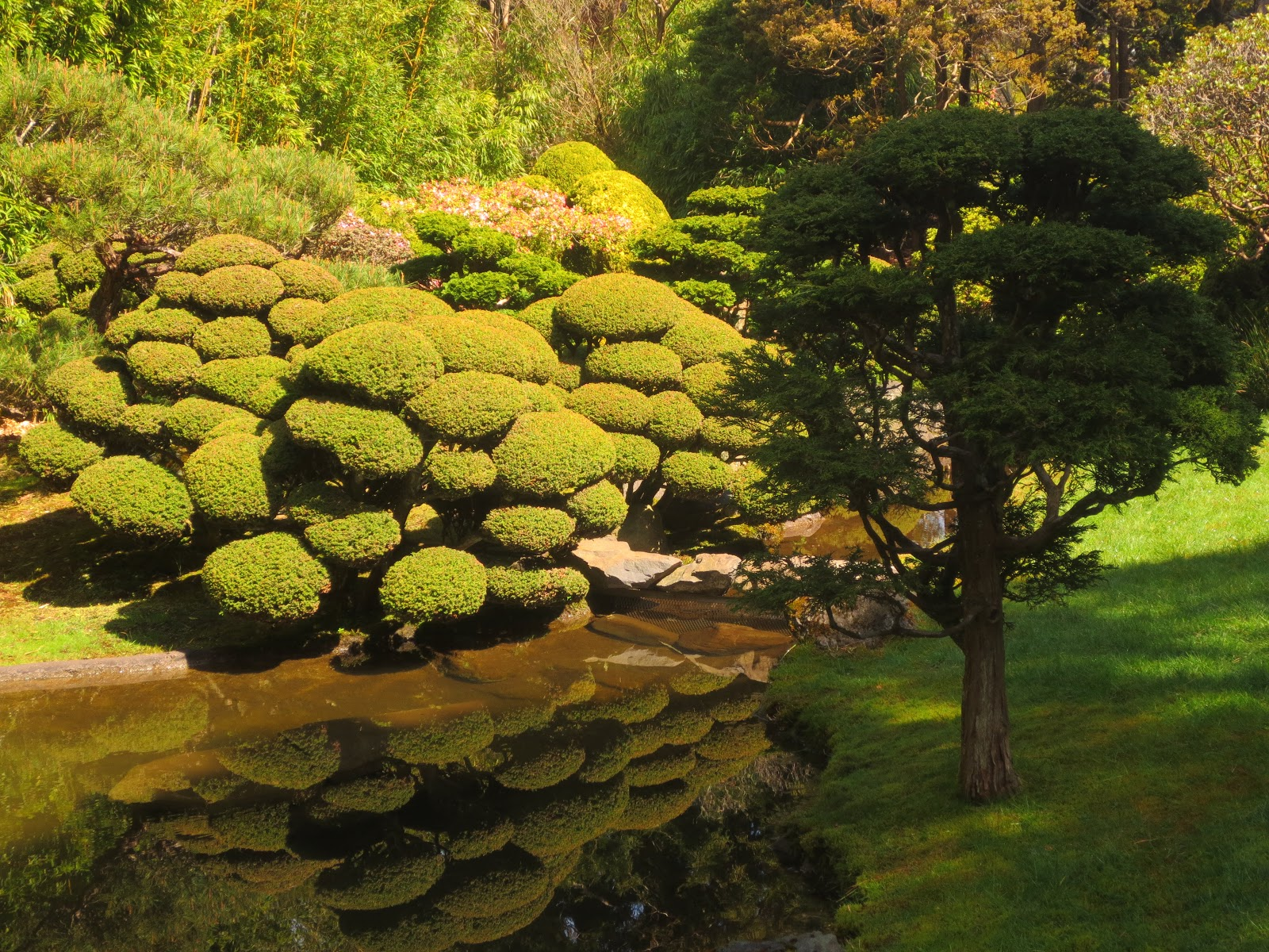 Thursday\'s Child: Japanese Tea Garden, San Francisco | Of Muses and ...