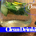 Deep Cleansing and Detox for the New Year - Water Recipe
