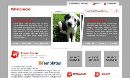 wp polaroid blogger magazine template free download blogging trainings