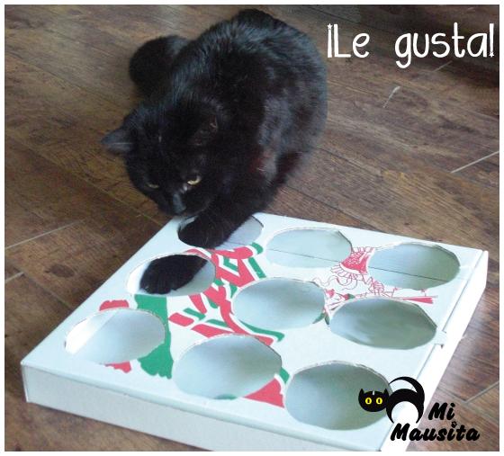 juguete-casero-para-gatos