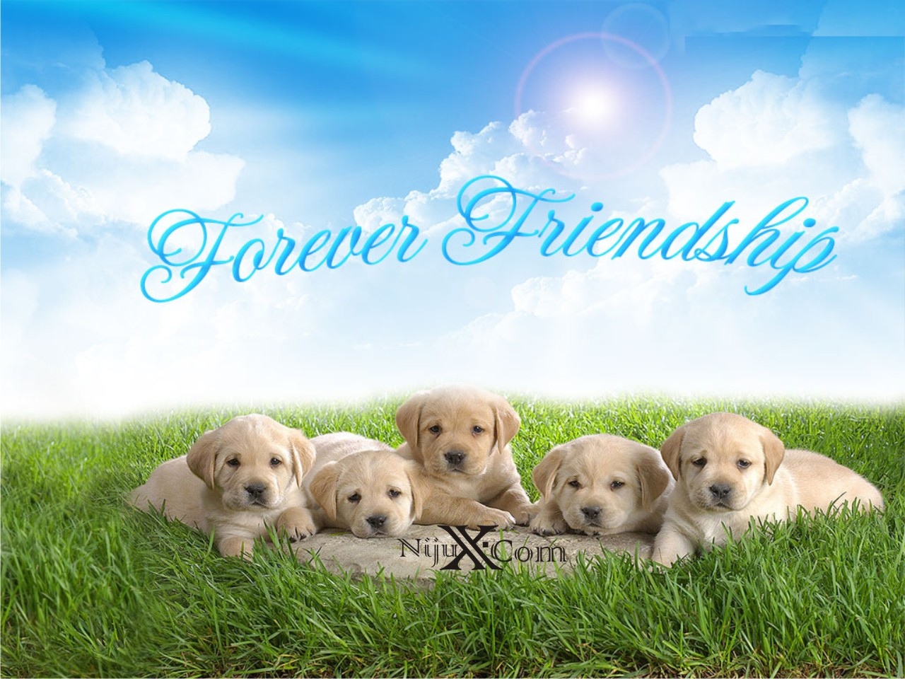 http://4.bp.blogspot.com/-nAfrKY6rUTI/UB4o8zYgSqI/AAAAAAAAA1g/EnR_CtFSvGQ/s1600/friendship-day4.jpg