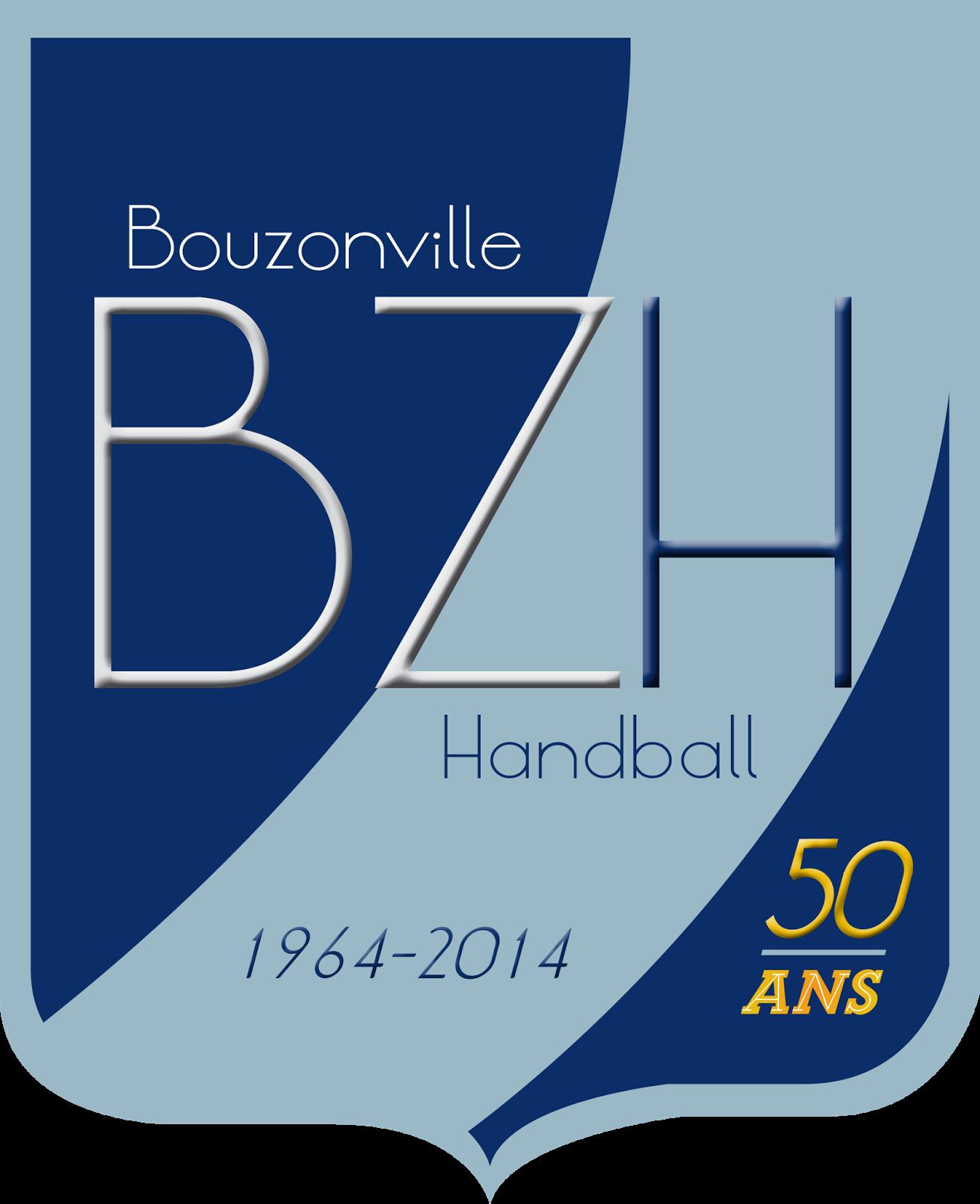 Bouzonville handball ensemble pour une nouvelle saison for Piscine de bouzonville