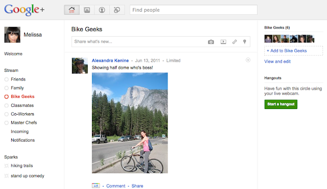 Screenshot: Google+ Stream
