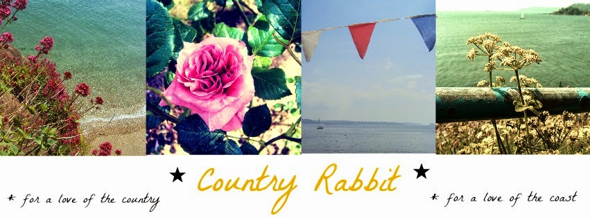 Country Rabbit