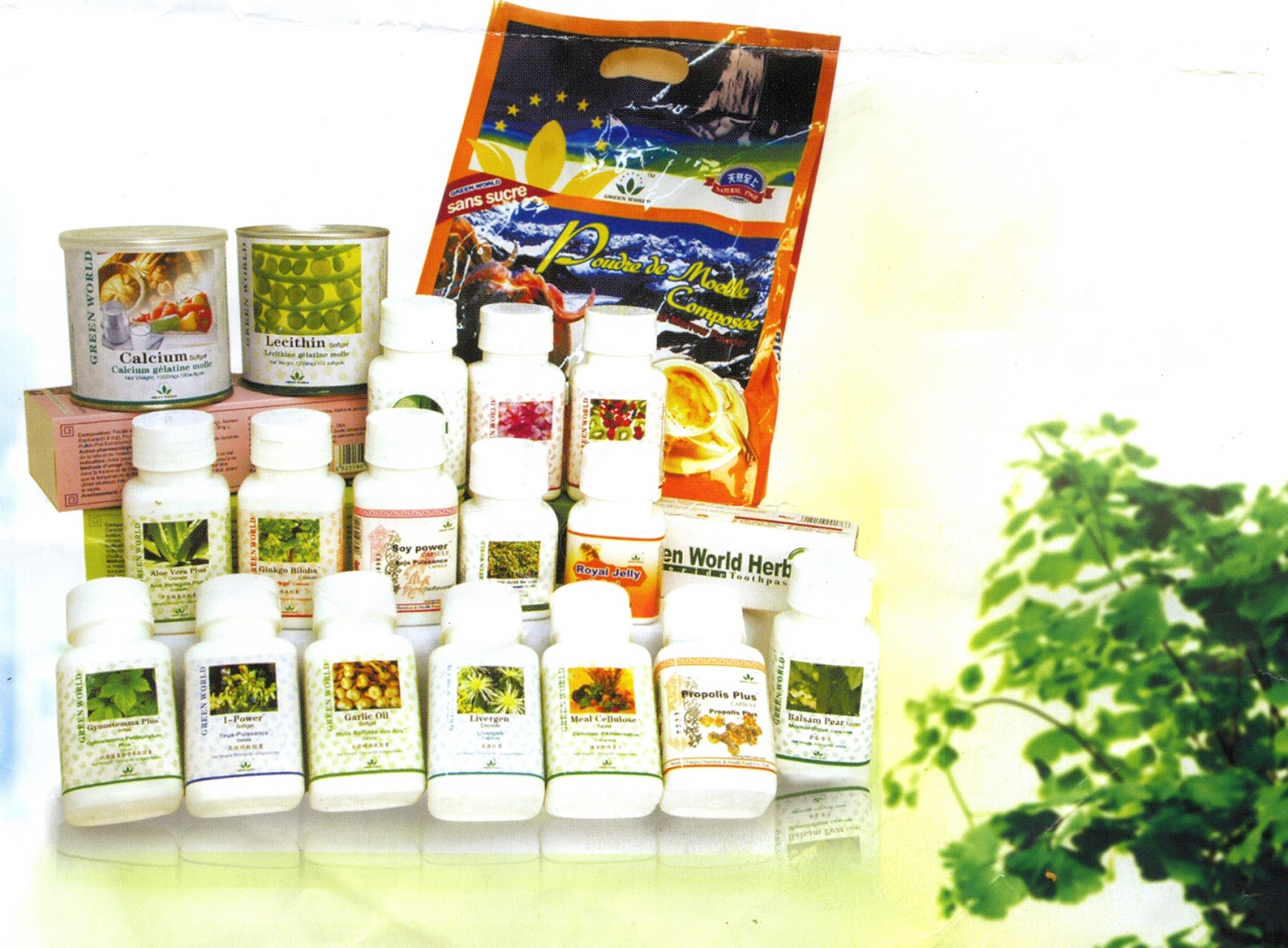 Green World Products Welcome To Ify S Health Blog