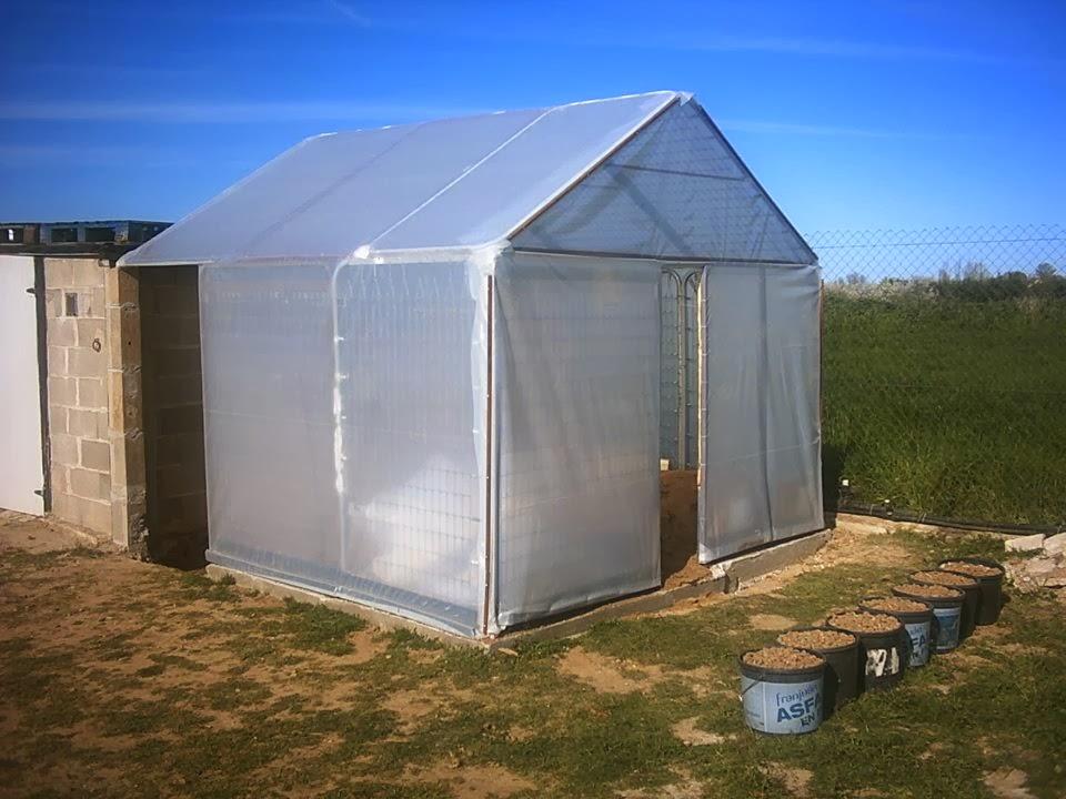 Serendipia c mo hacer un invernadero casero por 75 - Fabricar un invernadero ...