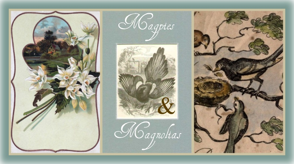 Magpies and Magnolias