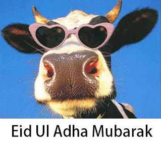 idul adha, eid al adha, lebaran qurban, kartu idul adha, ucapan idul adha, selamat idul adha, kartun idul adha, gambar idul adha, kaligrafi idul adha