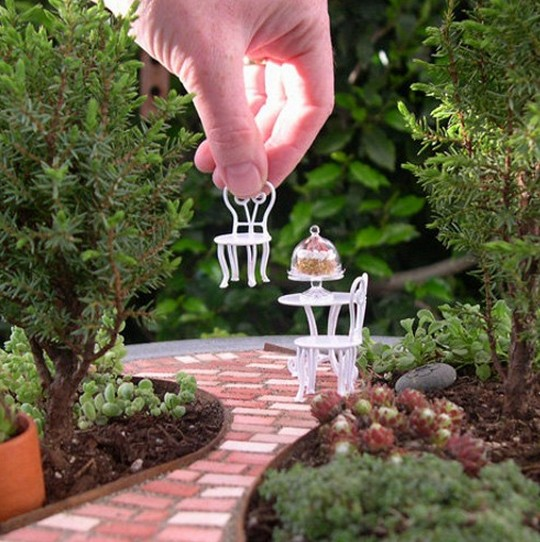 mini jardins no vidro:Meu Palácio de 64m²: Mini Jardins – Mini fofuras