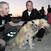 La Policía investiga el brutal apuñalamiento de un perro en un centro de adiestramiento