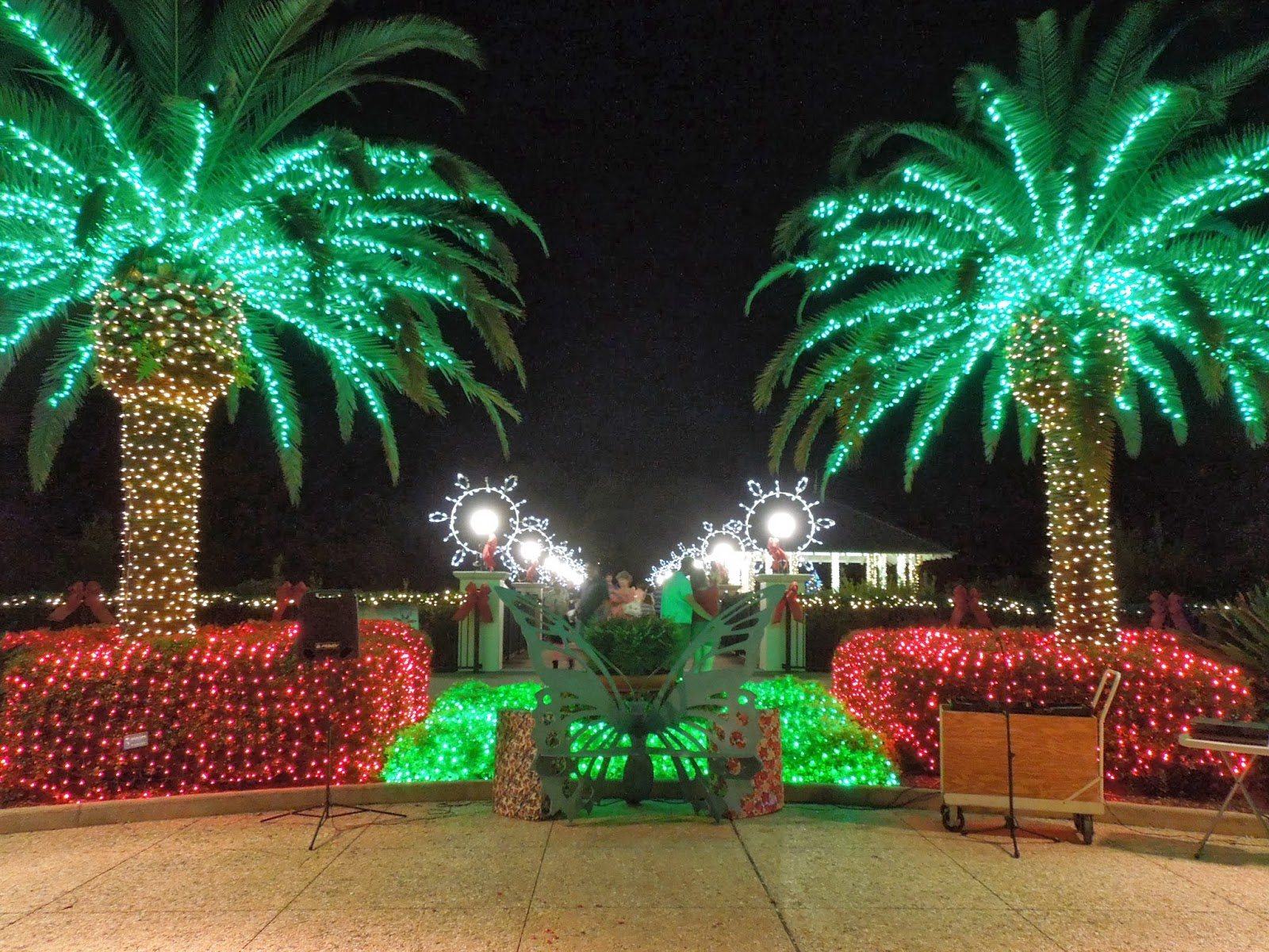 Sweet escapes christmas in the gardens for Holiday lights botanical gardens