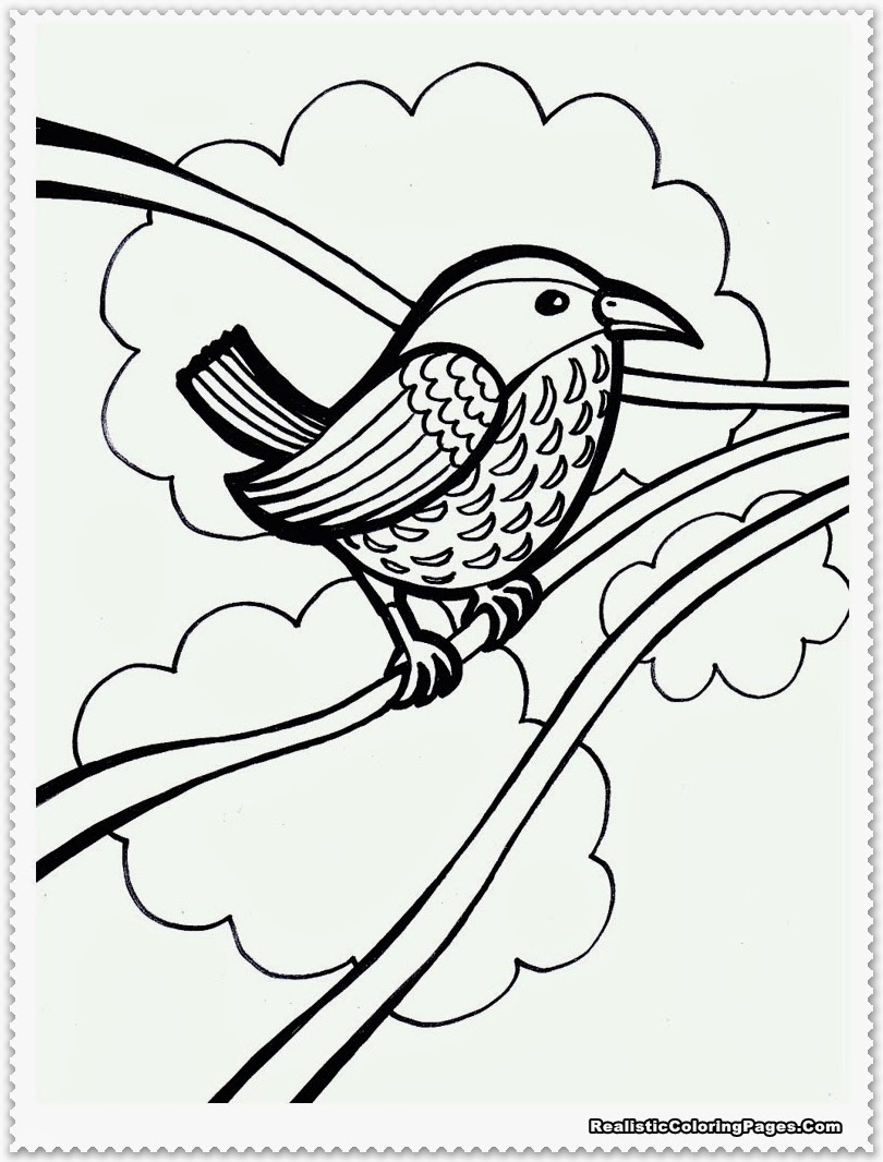 bird coloring pages free printables - photo#15