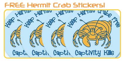 FREE Hermit Crab Stickers