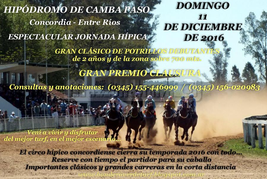 Camba Paso 11 de diciembre