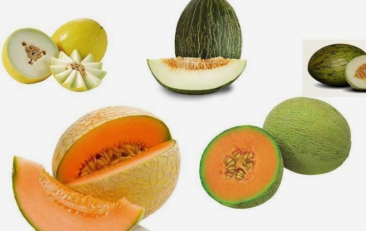 Os 15 benefícios do melão para a nossa saúde