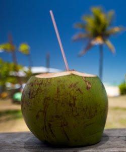 Água de coco: benefícios cientificamente comprovados