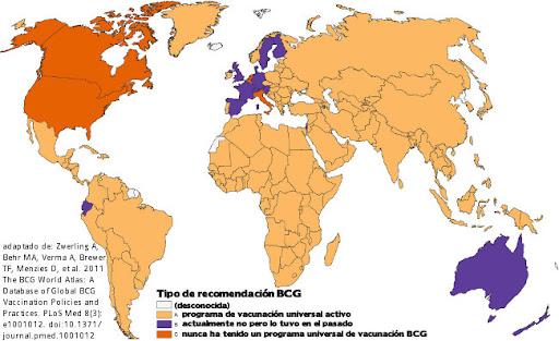 atlas BCG