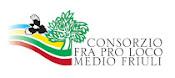 CONSORZIO FRA PRO LOCO MEDIO FRIULI