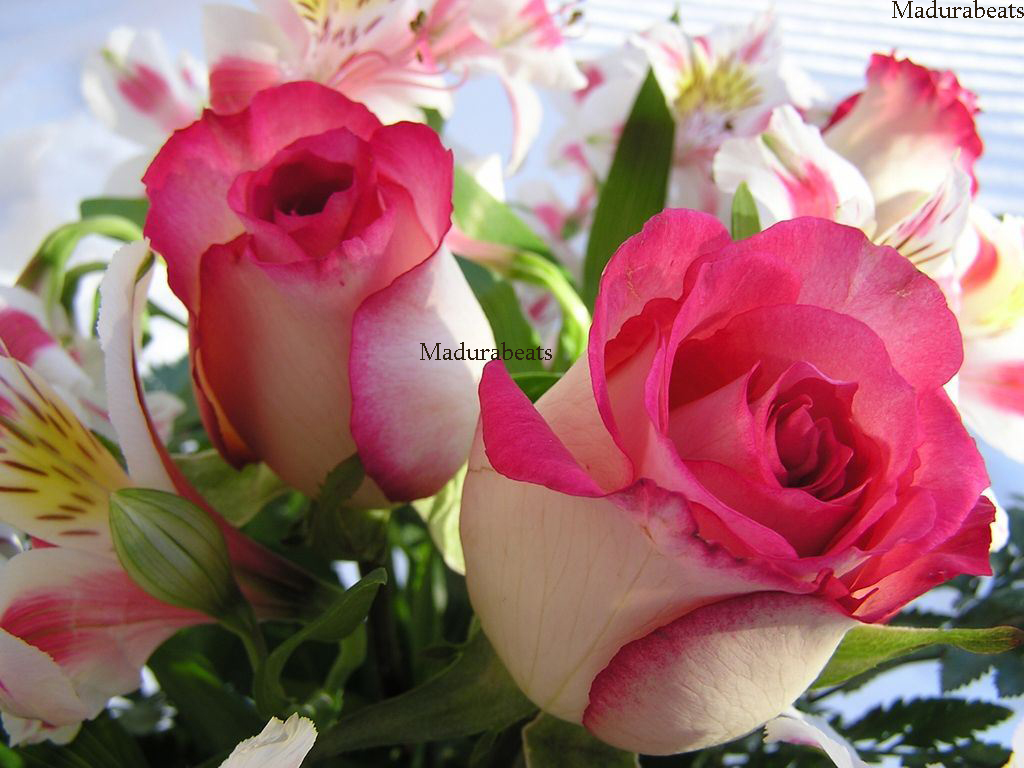 Generous beautiful real flowers contemporary wedding and flowers fine beautiful real flowers images wedding and flowers ispiration izmirmasajfo Gallery