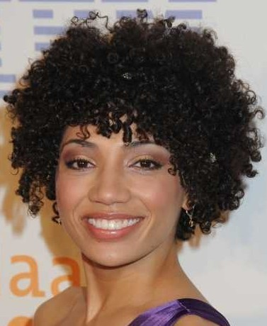 Curly Hairstyles For African American Women