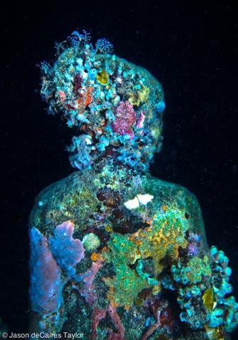 art sci sea sculptures of the underwater museum. Black Bedroom Furniture Sets. Home Design Ideas