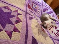 Periwinkle Blue quilt